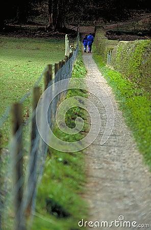 Hike longo do campo