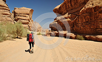 Hiker in desert