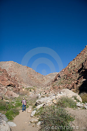 Hiker in desert canyon