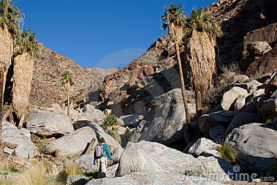 Hiker in the Desert Mountains