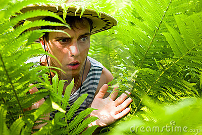 Hiker & ferns.tropical climate