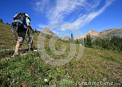 Hiker on Helen Lake Trail