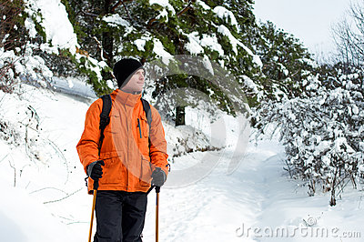Hiker standing in snow forest