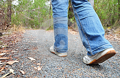 Hiker walking on track in the bush on mountain