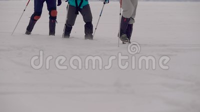 Hikers идут над белым снегом в холодном зимнем дне, полагаясь на ручках, взгляд конца-вверх на ногах акции видеоматериалы