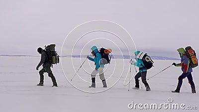 4 hikers идут на один другого над полем снега в холодном зимнем дне, помогая к себе ручками видеоматериал