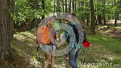 Hikers наслаждаются идти в лес - камера следовать сток-видео