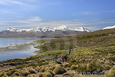 Hikers at Lake Chungara in Lauca National Park