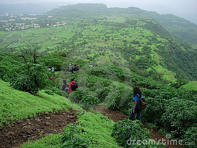 Hikers in tropical landscape
