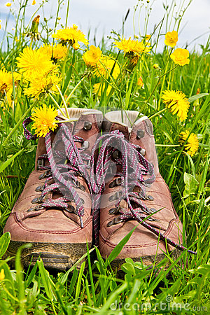 Hiking boots in a meadow