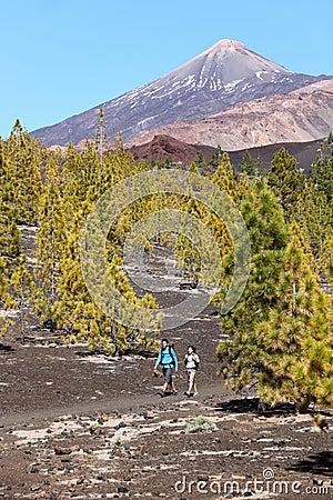 Hiking landscape Teide, Tenerife