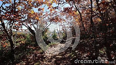 Hiking op het Franse bergachtige spoor in Rome, Maine stock video