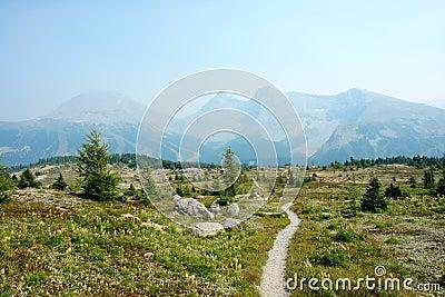 Hiking trail in sunshine