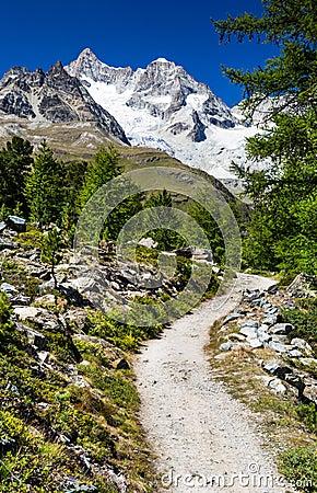 Hiking trail in Switzerland Alps