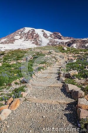 Hiking Trail to Mount Rainier