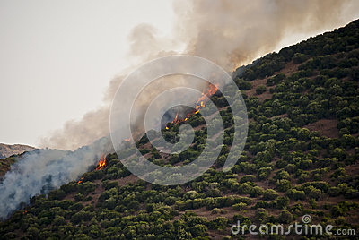 Hill on fire in Sardinia