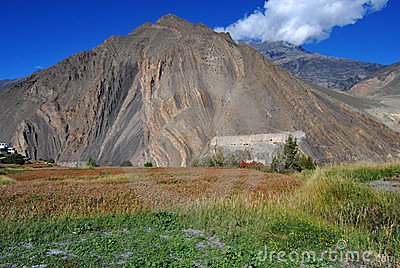 A hill from Nepal