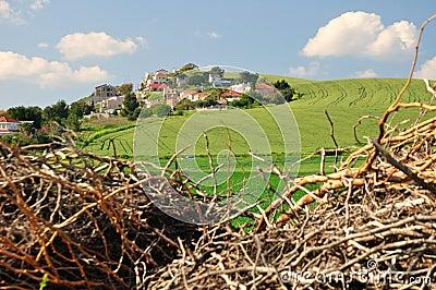 Hill Settlement.