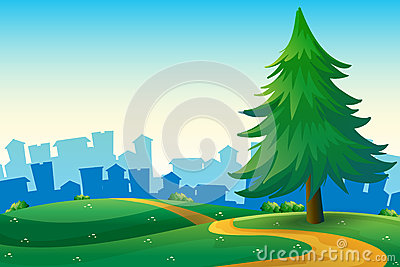Hills with a big pine tree near the tall buildings