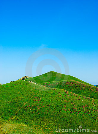 Hills covered with a green grass