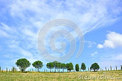 Hills in Tuscany , Italy