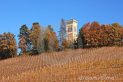 Hills and vineyards of Piedmont at fall, Italy.