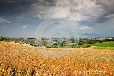 Hilly countryside of le Marche, Italy