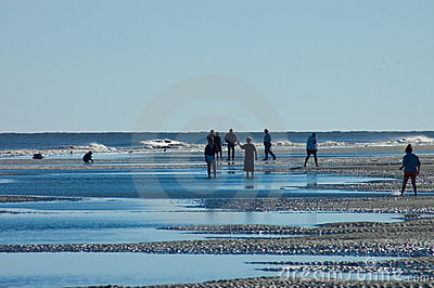 Hilton Head Island Beach Walkers