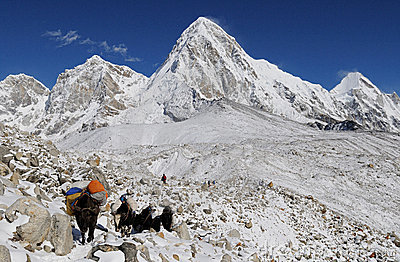 Himalaya Trekking 5