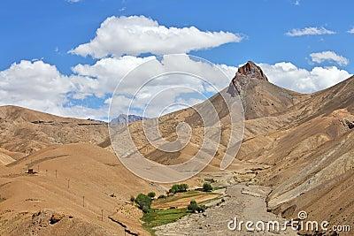 Himalayan oasis