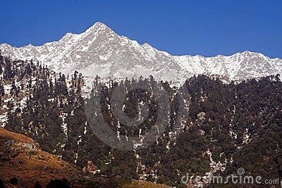 Himalayan SnowTrekking Routes Triund Kangra India