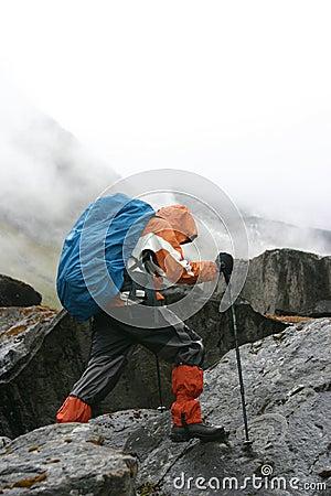 Free Himalayan Trekking Royalty Free Stock Photography - 24307