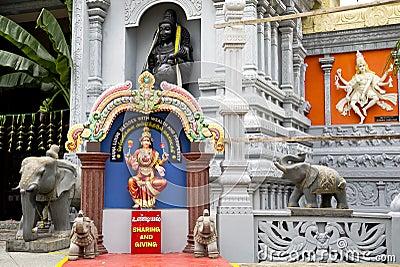 Hindu Religion Representatives