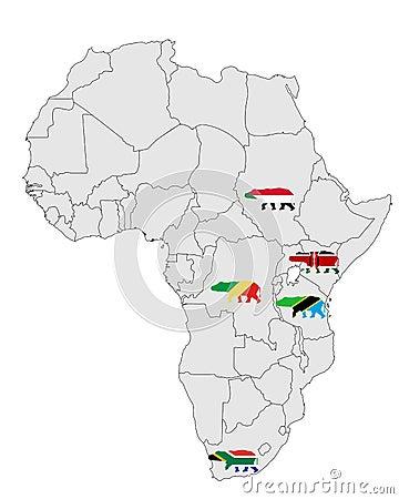 Hippo Africa