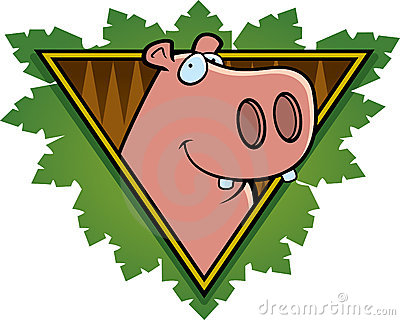 Hippo Safari Icon