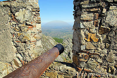 Historic gun