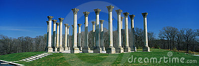 Historic National Capitol Columns