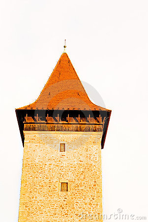 Historic stoned tower isolated
