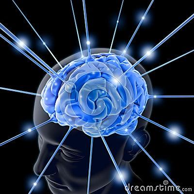 Hjärna
