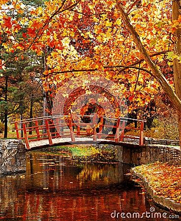 Hölzerne Brücke