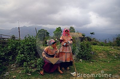 Hmong flower girls returning from the fields Editorial Image