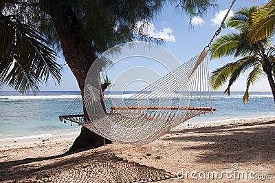Hängematten-und Palmen auf einem tropischen Strand