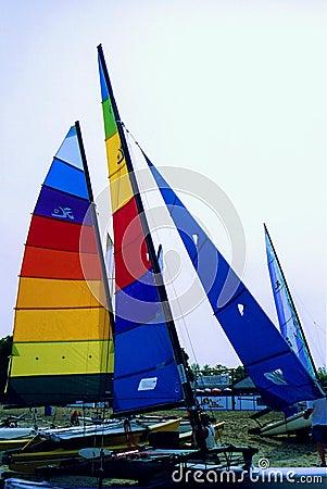 Hobie Cat Sails