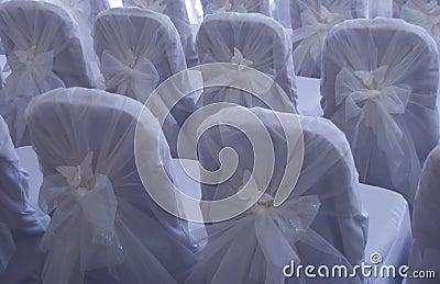 Hochzeitsstühle