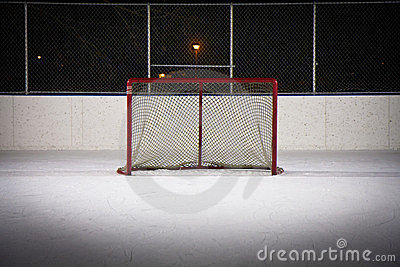 Hockey Rink Net
