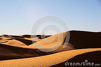 Hogbacked dunes