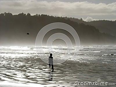 Hohope beach New Zealand