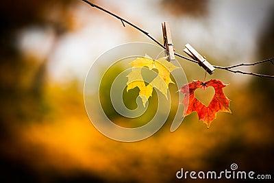 Hojas de otoño con los corazones
