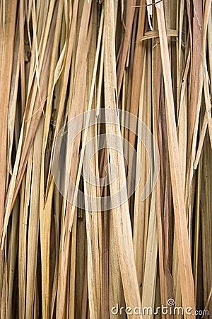 Hojas de palma secas