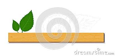 Hojas del verde con madera